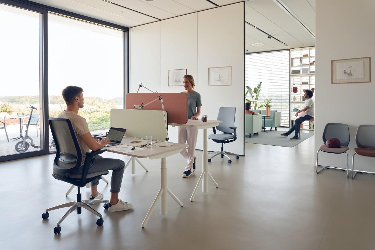 """Sedus """"se:lab e-desk A"""" Arbeitstisch, höhenverstellbar, steh-sitz, 65-128 cm, mit Motor"""